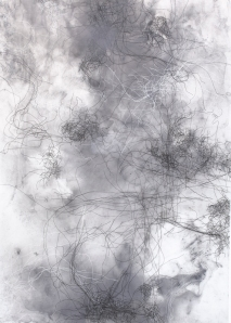 Nicci Haynes ink drawing web05